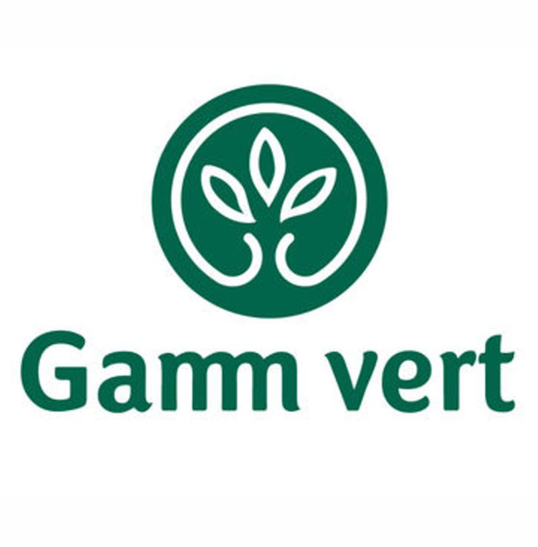 _gamm vert